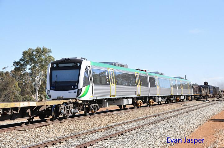 Transperth newiest B set 107 on the back of 5MP2 steel train at Tammin on the 31st May 2015