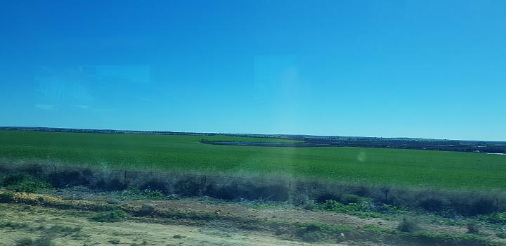 My rail trip on the Avonlink between East Perth and Merredin on the 13th August 2018