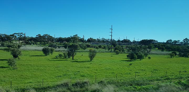 My rail trip on the Avonlink between Merredin and East Perth on the 13th August 2018 (Outskirts of Northam)
