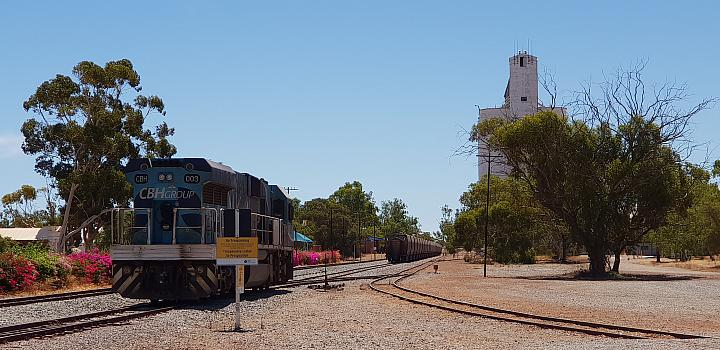 CBH003 and a heap of grain wagons is seen stabled at Three Springs siding 24/02/2019