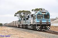 CBH014 and CBH013 on 5A43 loaded CBH grain train seen here on the approach to Tambellup to cross 5WB2 ballast train on the 12th February 2015