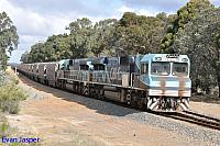CBH017 and CBH016 on 3A82 empty CBH grain train seen here heading though Narrikup for Wagin on the 21st May 2019