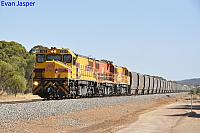 DBZ2301, DBZ2302 and DBZ2305 on 1K04 loaded CBH grain train seen here heading though the outskirts of Brookton on the 5th January 2020