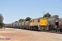 DBZ2305 shunting grain wagons around in the Brookton CBH siding on the 5th January 2020