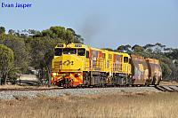 DBZ2309 and DBZ2311 on 5305 loco and wagon transfer from Forrestfield to Albany seen here heading though Pingelly on the 4th January 2019