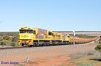 P2504, P2514 and P2505 on 3720 empty Mount Gibson iron ore train seen here heading though Erandu on the 2nd July 2019