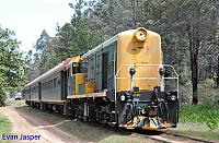 F40 on Hotham Valleys Steam Ranger seen here arriving back into Dwellingup on the 7th October 2015