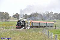 Hotham Valleys steam locomotive W920 and diesel locomotive F40 seen here on the Steam Ranger heading though Isandra on the 2nd October 2016