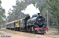 Hotham Valleys steam locomotive W920 and Diesel locomotive F40  on the Steam ranger seen here arriving back into Dwellingup on the 28th September 2016