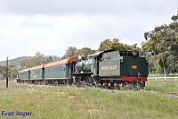 Hotham Valleys steam locomotive W920 and F40 on the rear seen here on the steam ranger heading though Isandra on the 2nd October 2016
