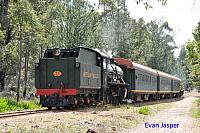 Hotham Valleys steam locomotive W920 on the Steam ranger seen here departing Dwellingup on the 28th September 2016