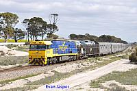 NR28 on 1PA8 Indian Pacific seen here heading though Tammin on the 3rd September 2017
