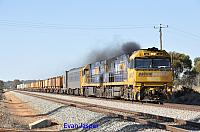 NR82 and NR31 on 5MP2 loaded steel train seen here powering though Meckering on the 31st May 2015
