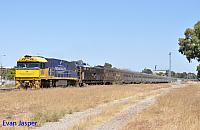 NR86 on 1PA8 Indian Pacific seen here heading though Midland on the 30th December 2018
