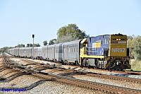 NR92 on 1004 empty Indian Pacific service seen here powering though Hazelmere on the 9th November 2014