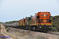 1204, 873, 851 and 850 on 2CG2 loaded grain train seen here heading though Wannamanna (SA) on the 13th April 2015