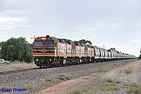 2212, 2207 and 2214 on 4176S loaded grain train see here powering though Korunye (SA) on the 14th April 2015