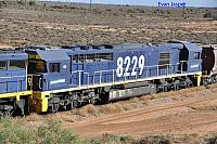 A close up photo of 8229, 3rd loco on 7FP1 coal train on the 26th January 2013