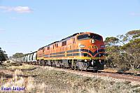 GM43, GM42 and 2216 on 3142S grain seen here powering though Mindarie (SA) on the 9th April 2015