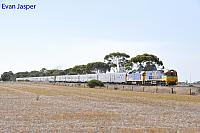 NR25 and G530 on 4SA8 Indian Pacific seen here heading though Mallala on the 6th April 2017