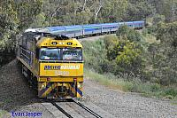 NR99 on 3MA8 Overland service seen here heading though Forsters Curve for Adelaide Terminal on the 12th November 2013