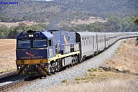 NR28 on 1PA8 Indian Pacific at Toodyay on the 24th March 2013